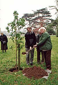 Tree planting at Flintham Hall.